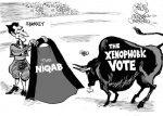 Caricature : Le niqab et les élections