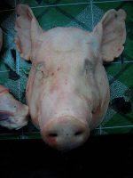 Dunkerque : une tête de porc accrochée devant la mosquée