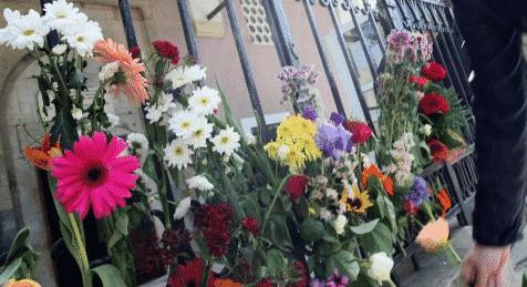 Fleurs déposées devant la mosquée de Sophia