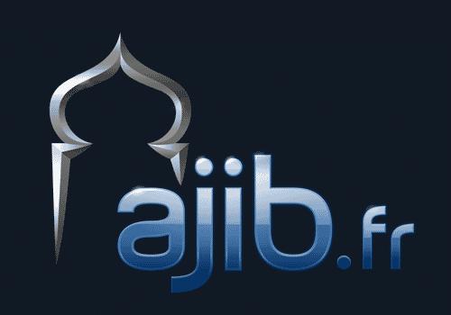 nouveau logo d'AJIB.fr