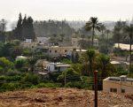 Des agriculteurs sommés par Israël de quitter leur terre et d'arracher leurs palmiers