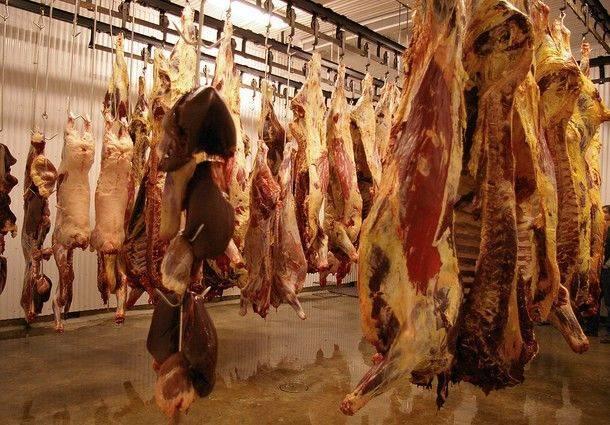viande-carcasses