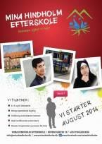 école danemark