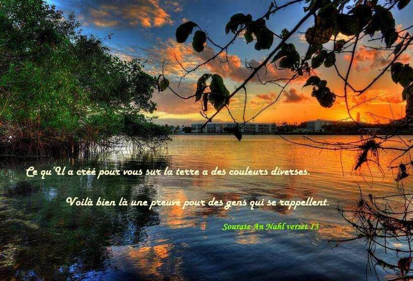 ob_f5f3a6_beaute-couleur-paysage-creation-allah