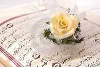 coran-et-fleur-rose-5867760