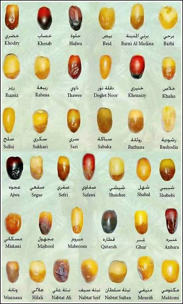 different-types-of-dates