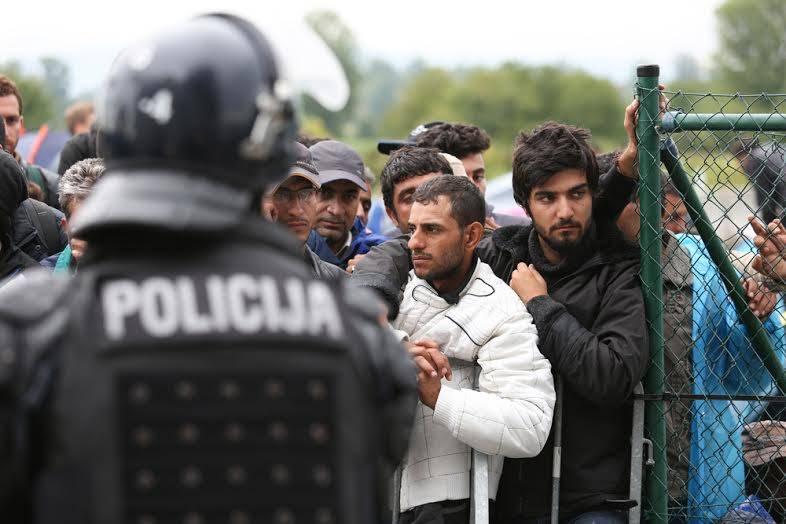 migrantsréfugiéssyriens