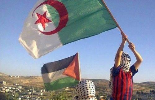 algérie palestine