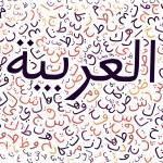 Suède : l'Arabe serait la seconde langue la plus parlée du pays