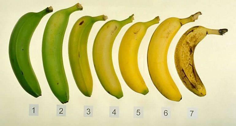 Une de ces sept bananes contient des propriétés anti-cancer.