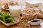 10 aliments riches en protéines végétales que vous devriez consommer